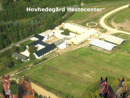 Hovhedegaard