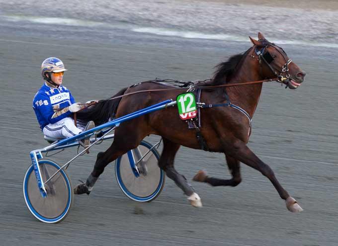 JT's Crown med Tom Erik Solberg var nummer to i såvel Kriterium som Dervy Foto Eirik Stenhaug
