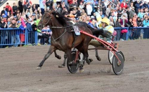 Spanske Trebol, vandt Kymi Grand i Finland 2015 Foto Gerard Forni