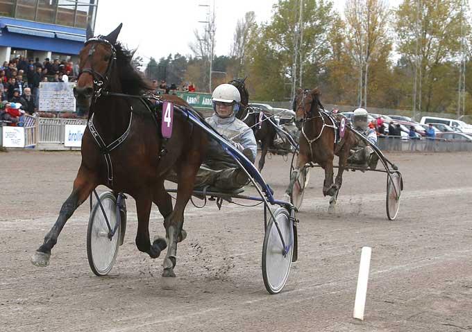 Tunika med Bjørn Goop vandt som vendet det store 2-årsløb Svampen
