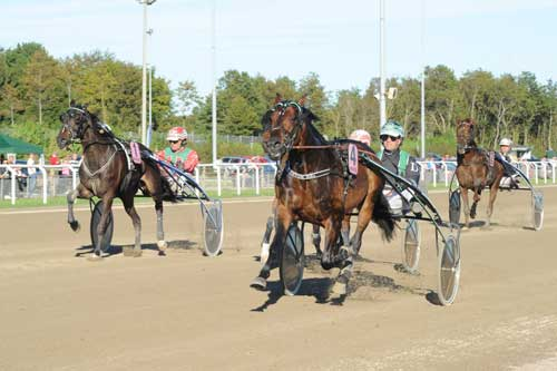 Winston Sisa med Jan Dahglaard vinder Aalborg Store Pris sikkert foran White Russian og Unik Tamsen. Foto Ole Hindby