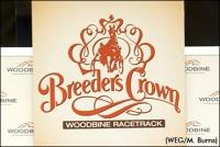 breeders-crown-woodbine-draw-370