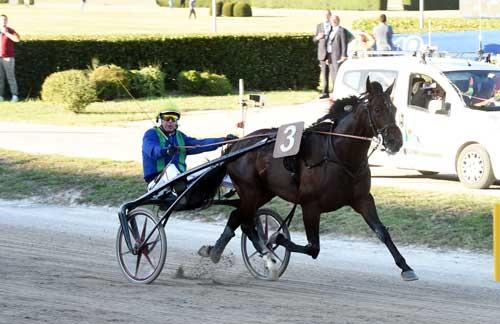 Brillantissime med Pierre Vercurysse vinder vandt Grand Premio Continentale. Foto Gerard Forini