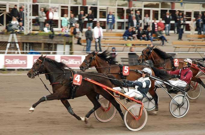 Deepish vinder for Timo Ârling 1.11.8 Foto HalmstadTravet