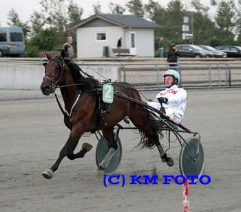 Simoni's Natural med Rene KJær er en god vinderchance på Skive Trav,