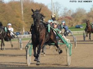 TRipolini VP blev nummer to på Axevalla. Foto Ole Hindby