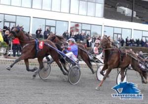 Viola K kom med vinderform til Billund. Hun vandt for 14 dage siden på Lunden med sin træner Rene Jonassen i sulkyen,