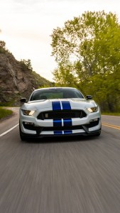 Shelby Mustang GT350 Wallpaper for iPhone 12 Pro