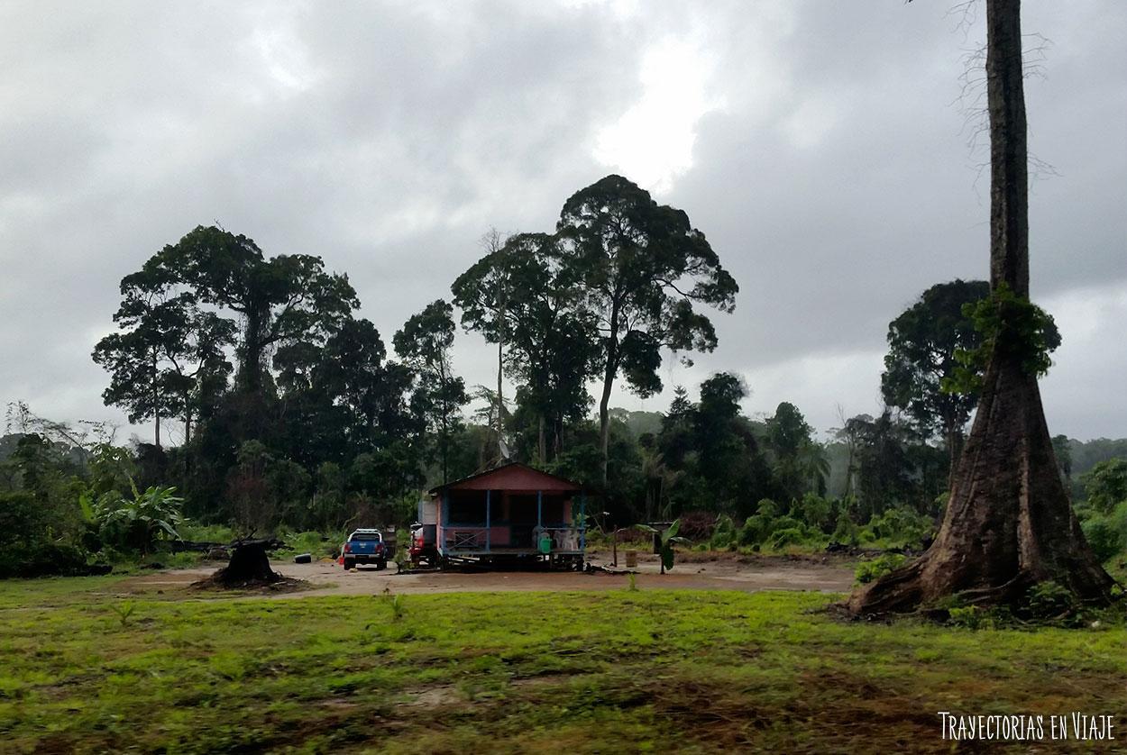 Imgenes del Interior de Guyana  Trayectorias en Viaje