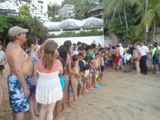 Liberación de Tortugas en Park Royal Acapulco