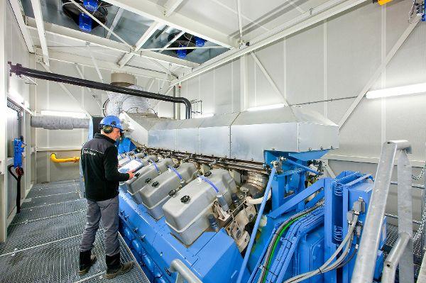 Blockheizkraftwerke bringen Gewächshäuser auf Temperatur