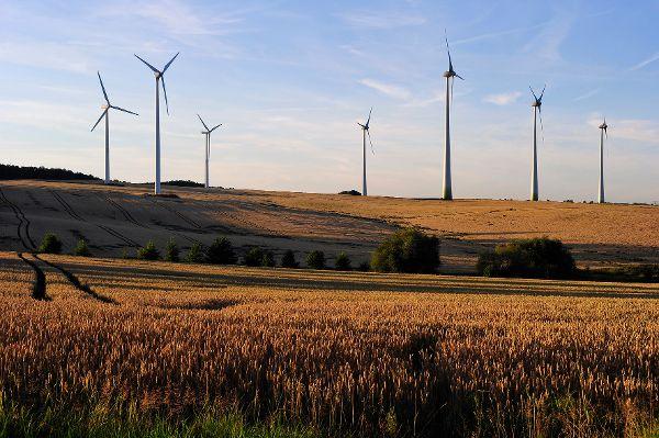 Windkraft-Anlagen: Effizienter und dazu noch leiser, geht das?
