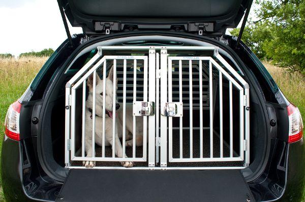 Hundetransportsysteme auf dem Prüfstand