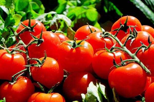 Tomaten lassen dicke Füße abschwellen