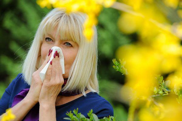 Eine Salbe gegen Pollenallergie