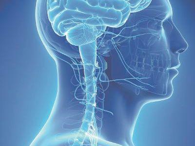 Tumortherapiefelder sind rasch wechselnde elektrische Felder. Sie können die Teilung der Tumorzellen verlangsamen oder stoppen und zu ihrem Absterben führen. © Sebastian Kaulitzki - stock.adobe.com TRD / Medical Press