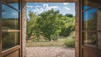 Blick durch die Haustür auf einen Baum