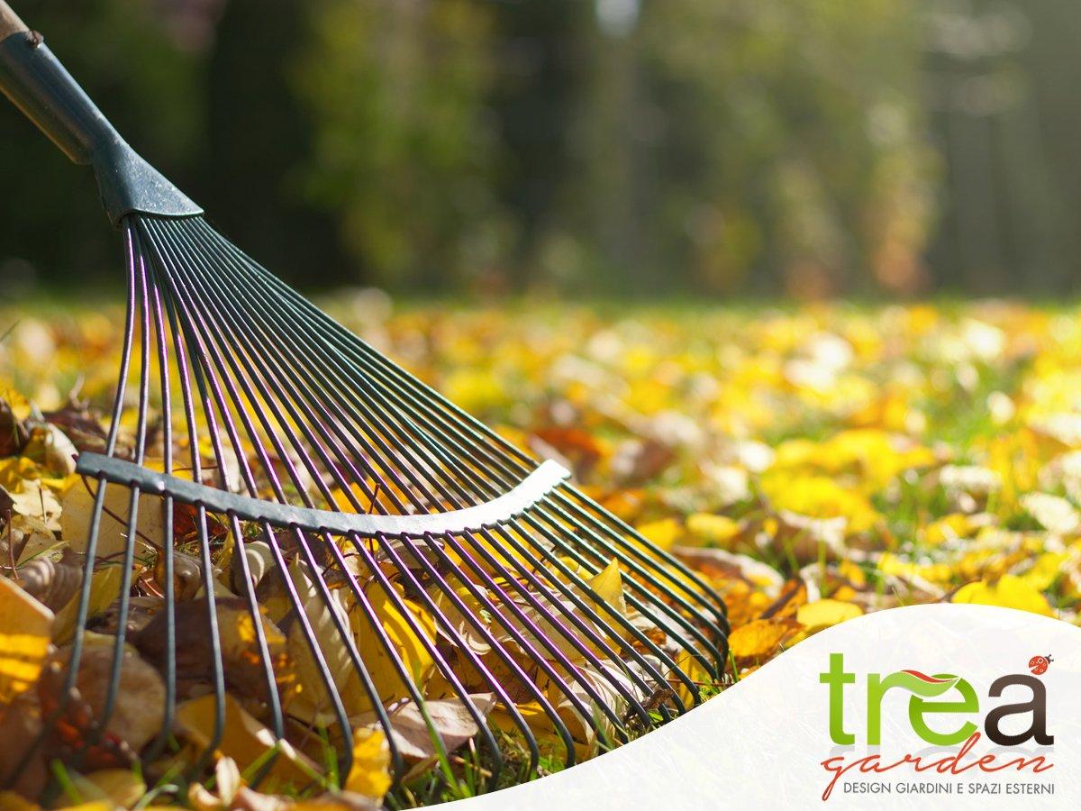Raccolta delle foglie a ottobre  Blog di giardinaggio Trea