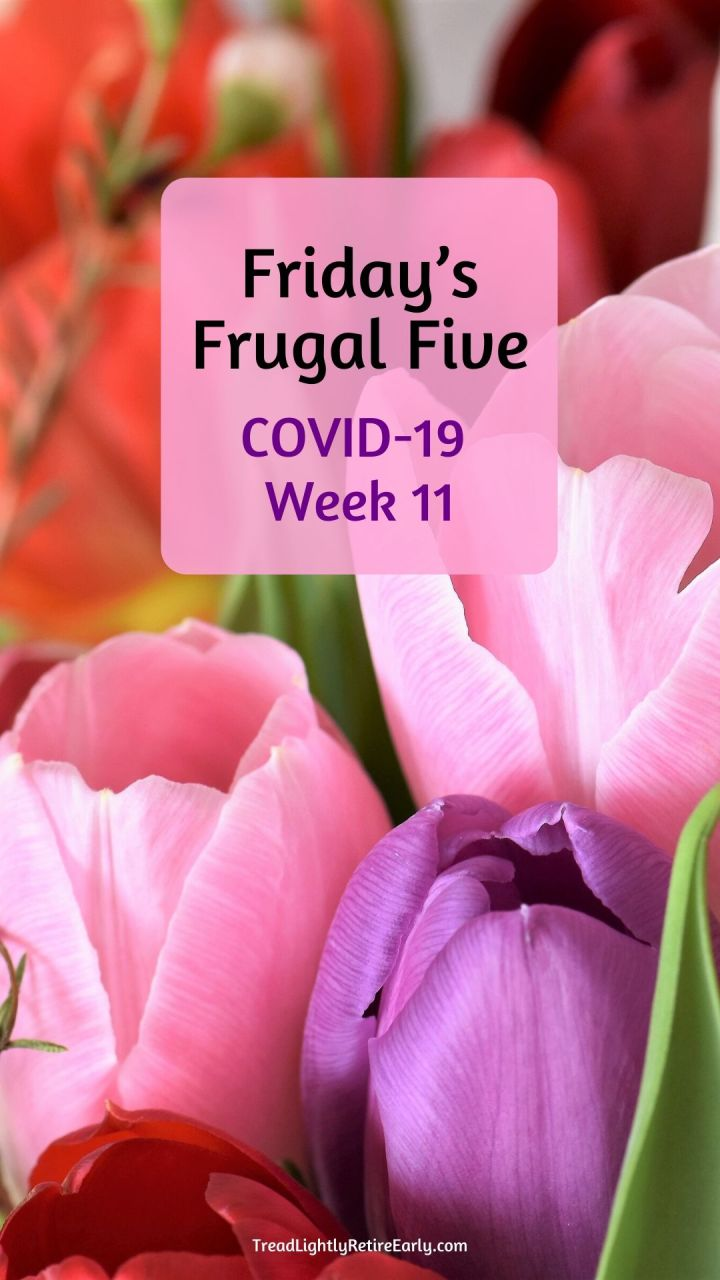 week 11 pin