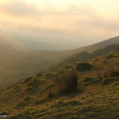 Wales is a magical place.  Sheep, lambs, sunshine, mountains, streams, fresh air, ahh.
