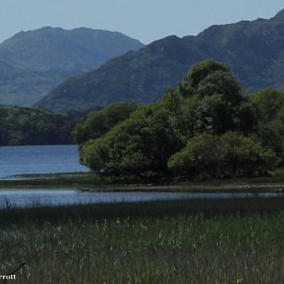 Lough Lein