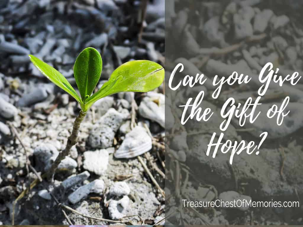 Can you give the Gift of Hope?
