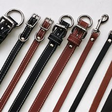 Leather Leads & Collars