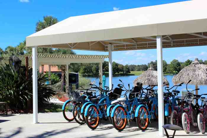 Bike and Surrey rental at the Hyatt Regency Grand Cypress