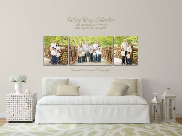 wall guides - family 2