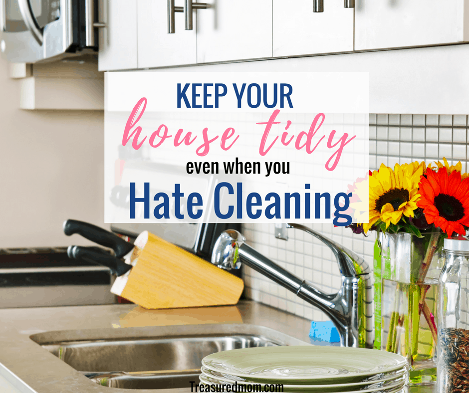 Messy Kitchen Cleaning Games: Keep Your House Tidy Even When You Hate To Clean