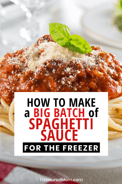 plate of spaghetti for how to make big batch spaghetti sauce for freezer