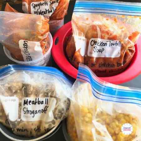 aldi freezer meals for instant pot in containers