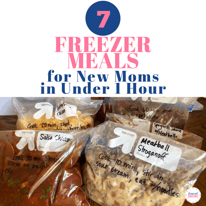 aldi postpartum freezer meals for instant pot