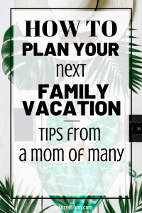 bathing suit, palm branch, items for how to plan family vacation