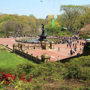 Central Park Bethesda