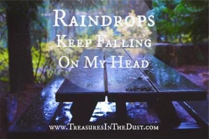 Raindrops Keep Falling OnMyHead!