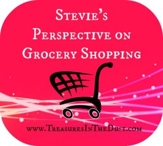 Stevie's Perspective on Grocery Shopping