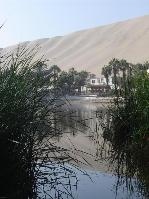 The oasis of Huacachina is so beautiful!