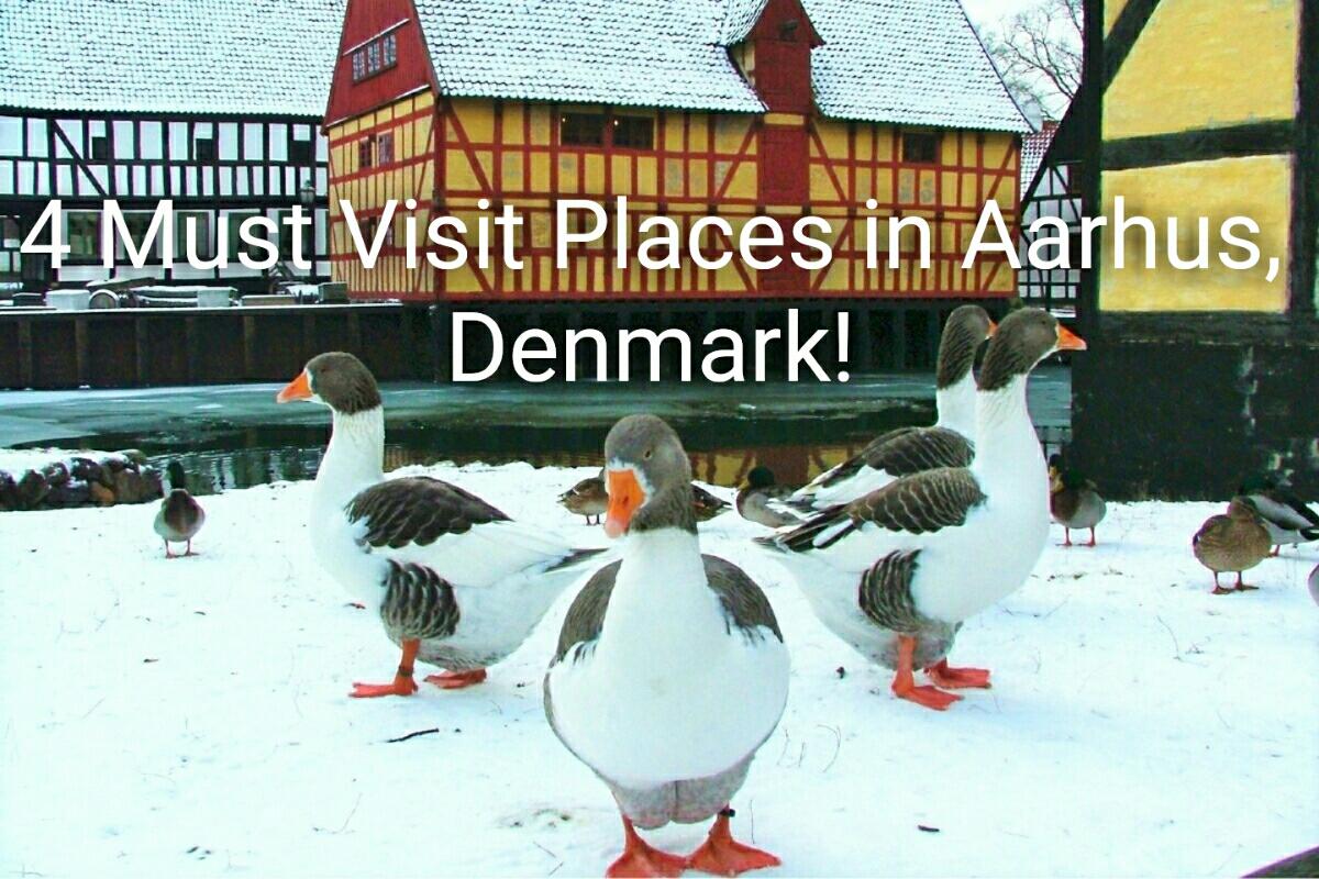 4 Must Visit Places in Aarhus, Denmark!