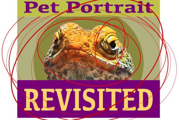 Pet Portrait Revisited exhibition