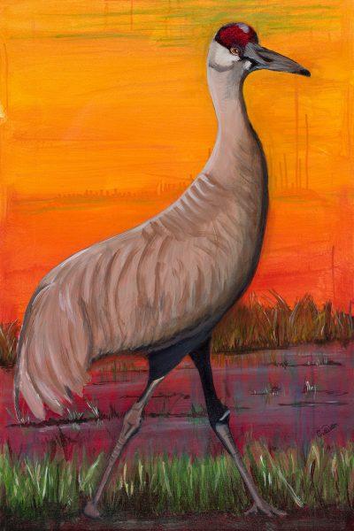 Sandhill Crane III, acrylic