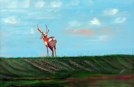 "Old Pronghorn, acrylic on canvas, 24 x 36"""