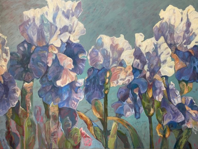 Hoffman final.iris