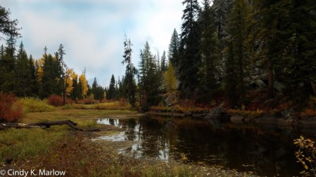Fall in McCall, photograph