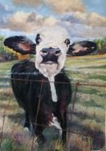 """""""The Cow Next Door"""", Pastel, 10.5"""" X 13"""""""
