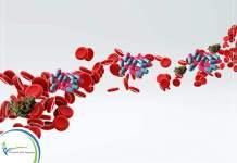 تنظيف الدم من السموم والمخدرات