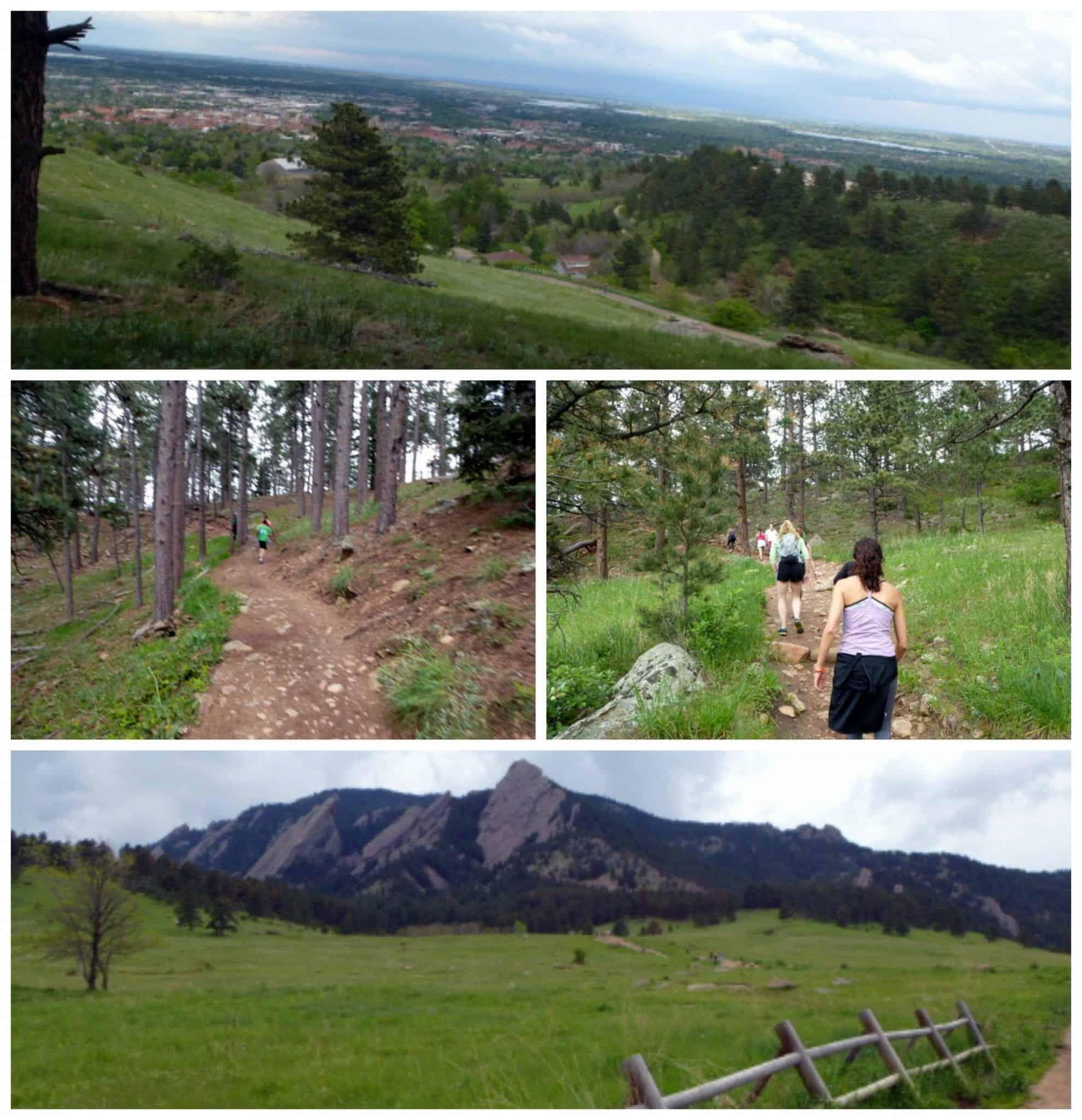 Trail Run Blend 2015