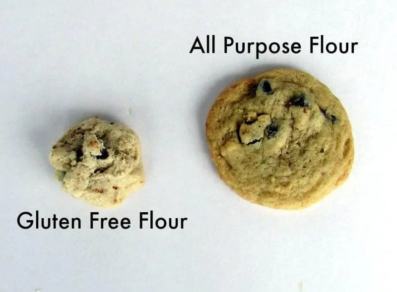 Gluten Free Flour vs All Purpose Flour