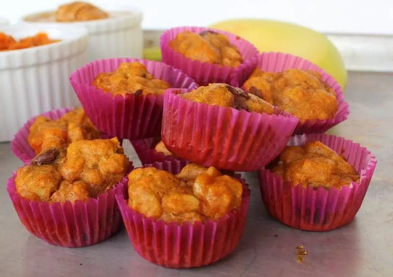 Pumpkin Banana Snack Bites from Treble in the Kitchen