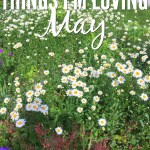 Things I'm Loving: May 2017